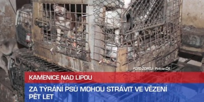 Online pujcka pred výplatou česká třebová otevírací doba